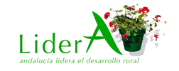 Proyecto Lidera